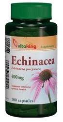 Echinacea - Vitaking