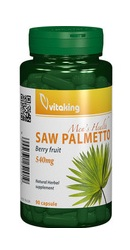 Extract Palmier pitic - Vitaking