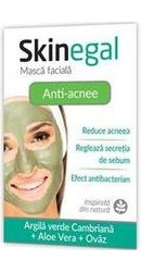 Skinegal Masca Anti-acnee - Zdrovit