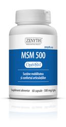 MSM 500 - Zenyth