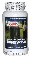 Bonefactor