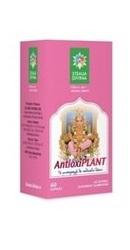 Antioxiplant