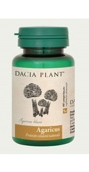 Agaricus Blazei - Dacia Plant