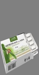 Artroplant cu MSM - Dacia Plant