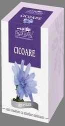 Ceai de cicoare - Dacia Plant