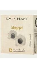 Ceai de musetel - Dacia Plant