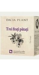 Ceai de trei frati patati - Dacia Plant