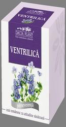 Ceai de ventrilica - Dacia Plant