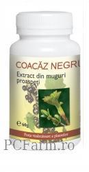 Coacaz negru - Dacia Plant