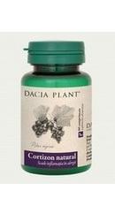 Cortizon natural - Dacia Plant
