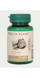 Drojdie - Dacia Plant