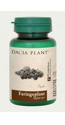 Faringoplant