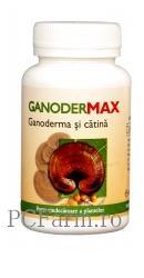 GanoderMAX - Dacia Plant