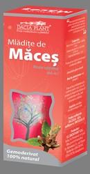Mladite de maces - Dacia Plant