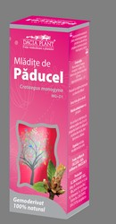 Mladite de paducel - Dacia Plant