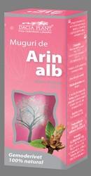 Muguri de arin alb - Dacia Plant