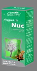 Muguri de nuc - Dacia Plant