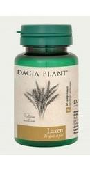 Laxen - Dacia Plant