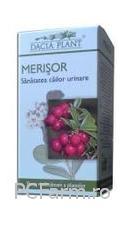Merisor - Dacia Plant