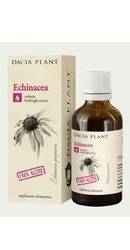 Tinctura de Echinacea fara alcool - Dacia Plant