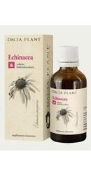 Tinctura de Echinacea - Dacia Plant