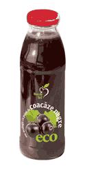 Suc ecologic cu pulpa de Coacaze Negre – Dacia Plant