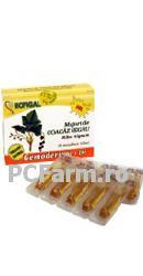 extract-gemeterapic-coacaz-hofigalf.bmp
