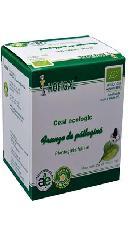 Ceai ecologic de patlagina - Hofigal