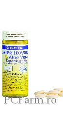 Tablete BIO cu Aloe Vera pentru vitalitate - Hoyer
