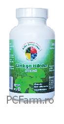 Ginkgo Biloba - Life Impulse