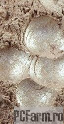 Pigment cosmetic perlat 62 bej coral - Mayam
