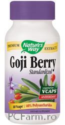 Goji Berry SE - Antioxidant puternic