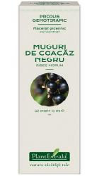 Concentrat din muguri de coacaz negru - Plantextrakt