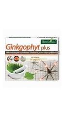 Ginkgophyt Plus - PlantExtrakt
