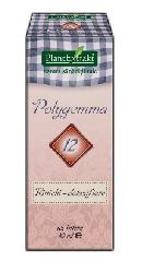 Polygemma 12 Rinichi detoxifiere - PlantExtrakt