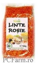 Linte Rosie - Solaris