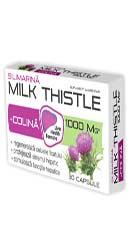 Milk Thistle + Colina - Zdrovit
